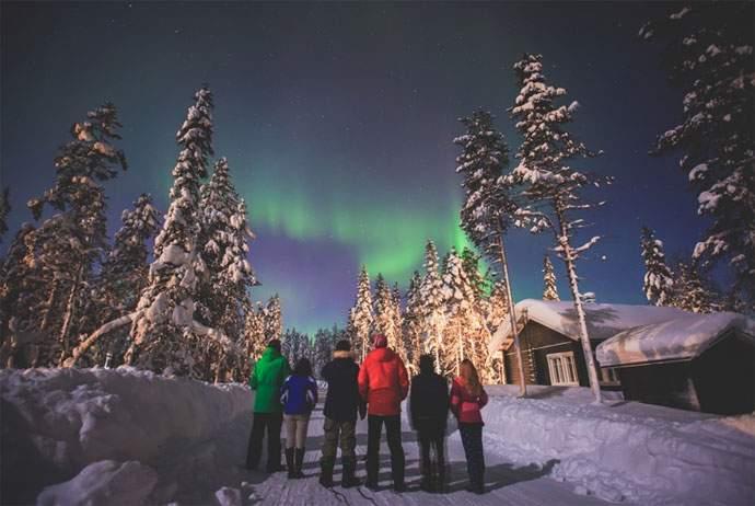 northern-lights-tour-wildlife