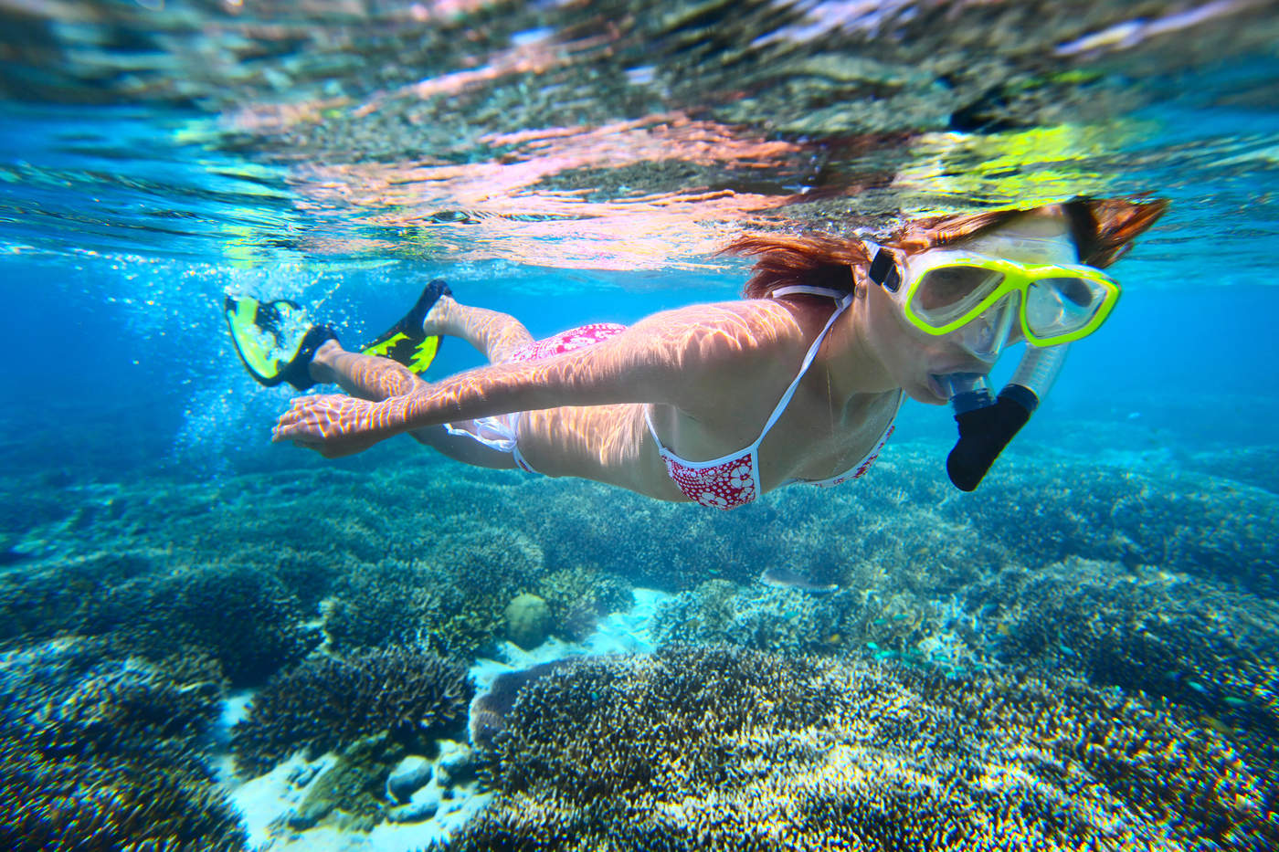 lifestyle_underwater