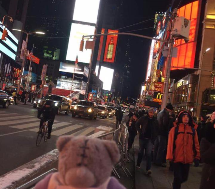 Mandy's Trip To New York