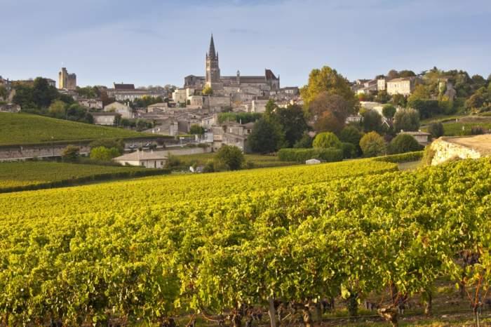 Taste of Bordeaux River Cruise