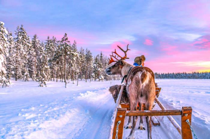 Lapland 2021 Now On Sale