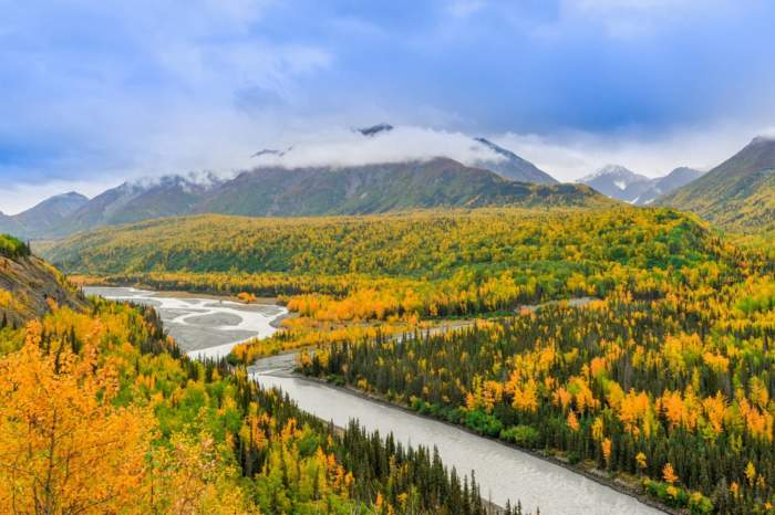 Alaska Cruise & the Rocky Mountaineer